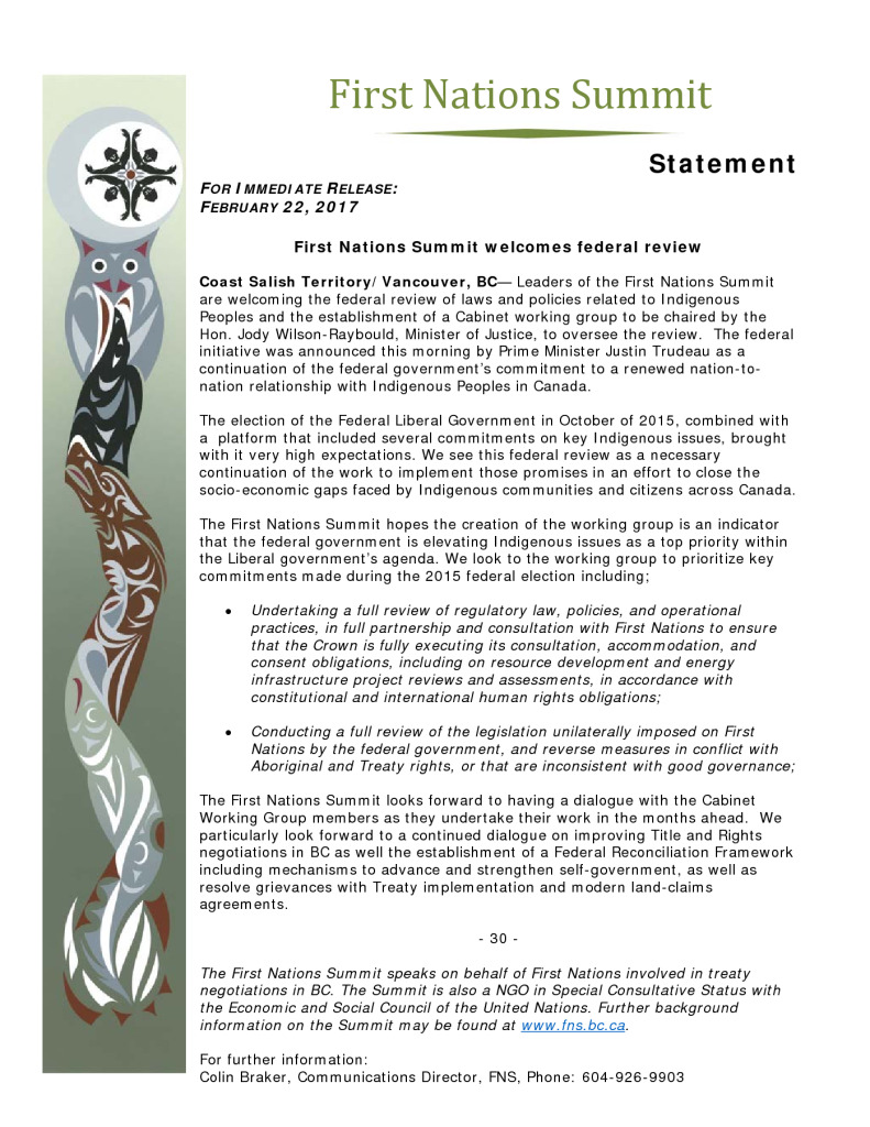 thumbnail of FNS-statement-re-fed-indigenous-review-committee-Feb-22-2017